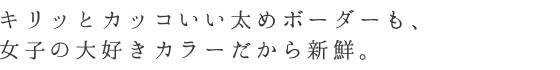 博多織半幅帯「紗- 夏のゆかた帯ーBORDER」