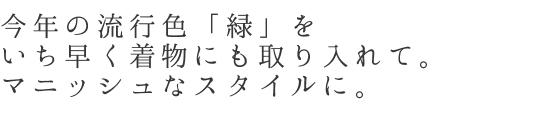 米沢木綿「若草green」