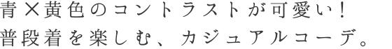 レース着物コーデセット「綿麻blue格子キモノx 萩半幅帯」